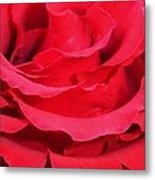 Beautiful Close Up Of Red Rose Petals  Metal Print