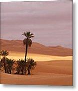 Beautiful Desert Metal Print