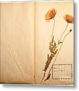 Beautiful Dried Vintage Flowers Metal Print