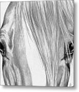 Beautiful Eyes Metal Print