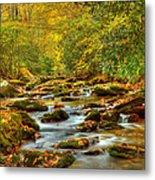 Beautiful Fall View In Tennessee Metal Print