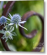 Beautiful Flower Buds Metal Print