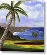 Beautiful Kauai Metal Print