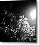 Beautiful Lamp Light In The Dark Metal Print by Fatemeh Azadbakht
