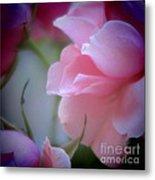 Beautiful Lavender And Purple Roses Metal Print