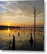 Beautiful Morning Metal Print
