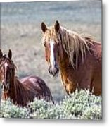 Beautiful Pair Metal Print