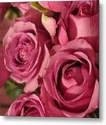 Beautiful Pink Roses 6 Metal Print