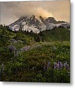 Beautiful Rainier Wildflower Meadows Metal Print
