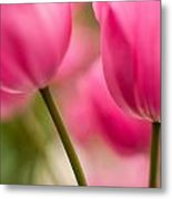 Beautiful Stems Metal Print