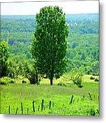 Beautiful Pennsylvania Summer Scene - Colorful Landscape - Painting Like Metal Print