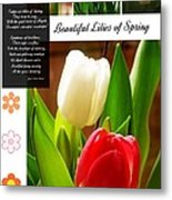 Beautiful Tulips Series 2 Metal Print