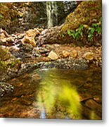 Beautiful View Of Upper Falls Located In Uvas Canyon County Park Forest Reflection Metal Print