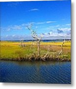 Beautiful View Topsail Island Metal Print