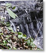 Beauty And The Rapids Metal Print