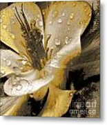 Beauty II Metal Print