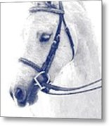 Beauty In A Bridle Metal Print