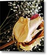Beauty In Baby's Breath Metal Print by Tanya Jacobson-Smith