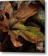 Beauty In Imperfection Metal Print