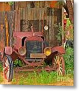 Beauty In Old Age Metal Print