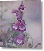 Beauty In Purple Metal Print