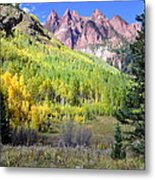 Beauty In The Mountains Metal Print