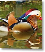 Beauty In The Pond Metal Print