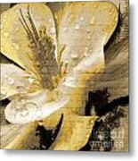 Beauty Iv Metal Print