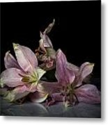 Beauty Of Decaying Lilies Metal Print