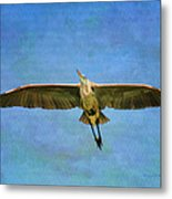 Beauty Of Flight Textured Metal Print