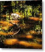 Beauty Of The Bog Metal Print by Karen Wiles