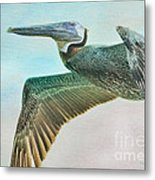 Beauty Of The Pelican Metal Print