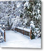 Beauty Of Winter Metal Print by Kathy Jennings
