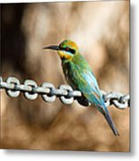 Beauty On Chains Metal Print