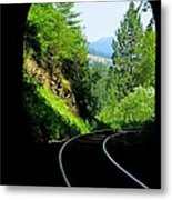 Beauty On The Other Side Metal Print