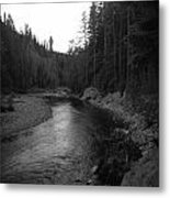Beauty On The River Metal Print