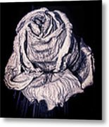 Beauty Wrinkle Metal Print