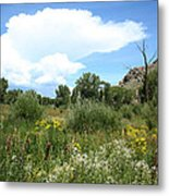 Beaver Creek Valley In Colorado Metal Print