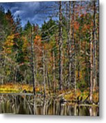 Beaver Pond Reflections Along The Highland Scenic Highway Metal Print