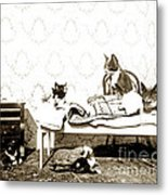 Bed Time For Kitty Cats Histrica Photo Circa 1900 Metal Print