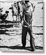 bedouin camel tender leads group of camels to be used for tourist trip into the sahara desert at Douz Tunisia Metal Print