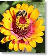 Bee Bright Metal Print