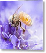 Bee Dream Metal Print