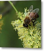 Bee Duty Metal Print