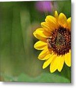 Bee Flower Metal Print