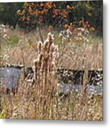 Bee Hives II Metal Print