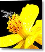 Bee In Black And White Metal Print
