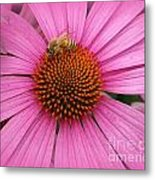 Bee In The Pink Metal Print