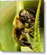Bee Juice Metal Print