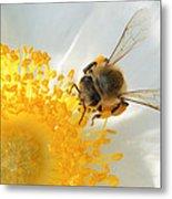 Bee-u-tiful Metal Print